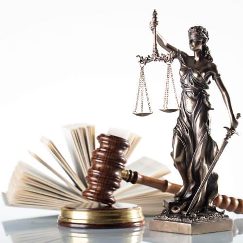 Prawo karne procesowe 500
